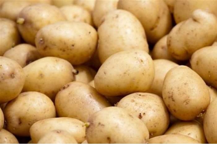 تفسير رؤية البطاطا في المنام